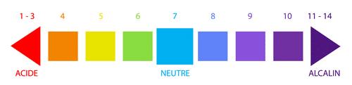 Echelle du pH ou Potentiel Hydrogène
