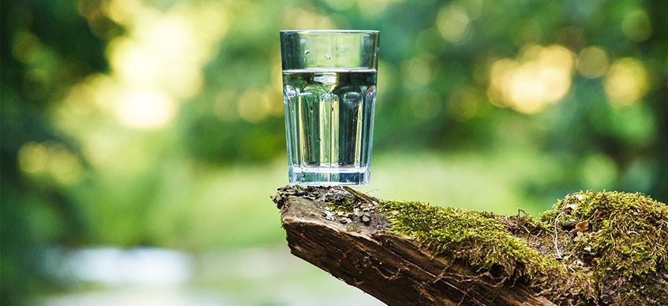 L'eau minérale de Velleminfroy contient zéro nitrate.